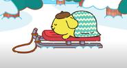 PomPom sleeping on a sled