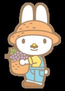 Sanrio Characters Papa (My Melody) Image004