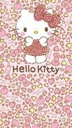 Sanrio Characters Hello Kitty Image067
