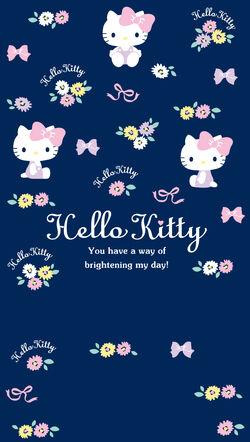 Sanrio Characters Hello Kitty Image079.jpg