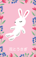 Sanrio Characters Hanatousagi Image001