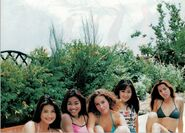 Coconuts Musume M-Co2