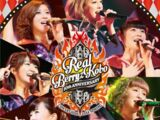 Berryz Koubou Debut 10 Shuunen Kinen Concert Tour 2014 Haru ~Real Berryz Koubou~
