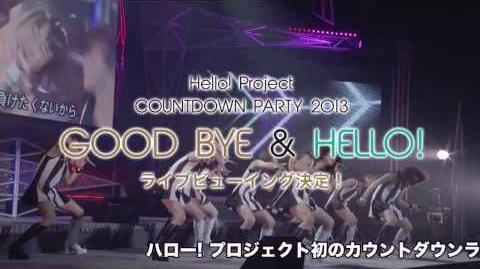 Hello! Project COUNTDOWN PARTY 2013 ~ GOOD BYE & HELLO! ~(30秒スポット)