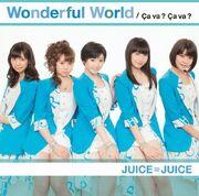WonderfulWorld-lc.jpg