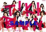 140922 SHINSEIDO sample