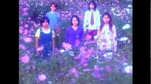 モーニング娘。 『愛の種』 (MV)