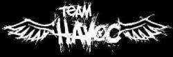 Team-HaVoC.jpg
