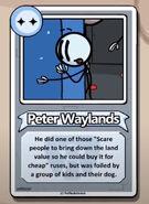 Peter Waylands Bio