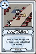 Joey Walnut Bio