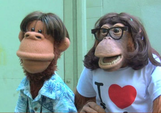 The Simian Undercover Detective Squad