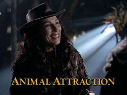 Animal Attraction TITLE.jpg