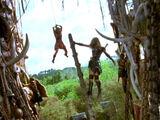 "Ladder Scene from ""Callisto"""