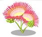 Persian Silk Blossom