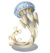 Crambionella Jellyfish
