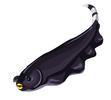 Black Ghost Knifefish
