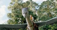Image Eragon (6)