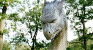 Image Eragon (30)