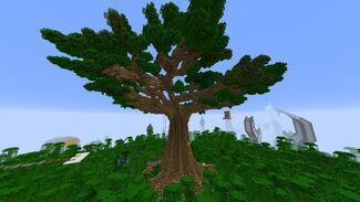 Iskall omega tree.jpg