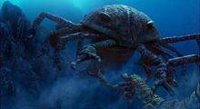 Pterygotus attacking a Brontoscorpio.jpg