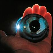 An eye from the colossal squid