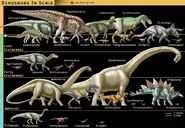 Dinosaurs in scale