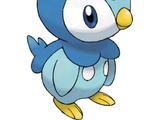 Piplup (Pokémon Series)