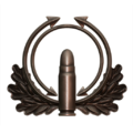 Badge CI006.png