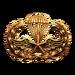 Para-Training (Gold)