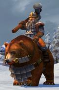 Наездник на медведе