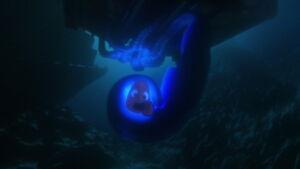 Nemo caught by giant squid