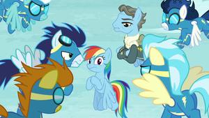 Wonderbolts looking suspicious at Rainbow Dash S5E15