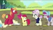Big Mac and Apple Bloom disqualified - Brotherhooves Social
