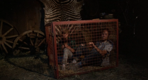 Ted and Susan caged