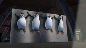 Penguins captured