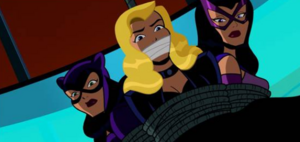 Catwoman, Huntress and Black Canary tied up