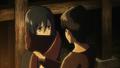 Mikasa - Background (2)