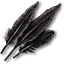 Tw3 griffin feathers.png
