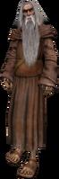älterer Druide