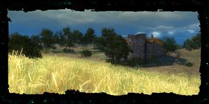 Felder von Trübwasser