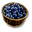 Tw3 blueberries.png
