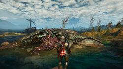 Tw3 coast of wracks - stranded whale.jpg