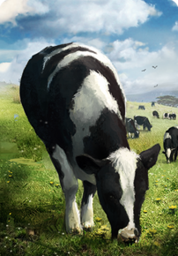 Tw3 cardart neutral cow.png