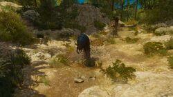 Tw3 baw big game hunter (4).jpg