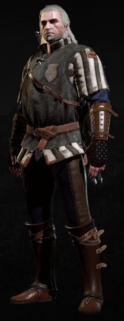 Tw3 armor kaedweni gambeson.png
