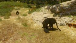 Tw3 baw big game hunter (3).jpg