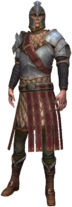 Kommandant der Scoia'tael