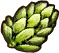 Substances Hop umbels.png