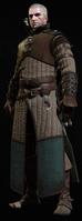 Tw3 armor enhanced ursine gear.png