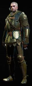 Tw3 armor grandmaster griffin gear.png